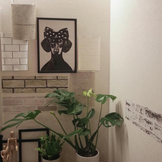On Walls,トルソー,モノトーン,モンステラ,リサベングトソン,壁紙はりかえ,グリーンのある暮らし,犬と暮らす,グレー好き,新築一軒家,こどもと暮らすのインテリア実例   RoomClip (ルームクリップ)