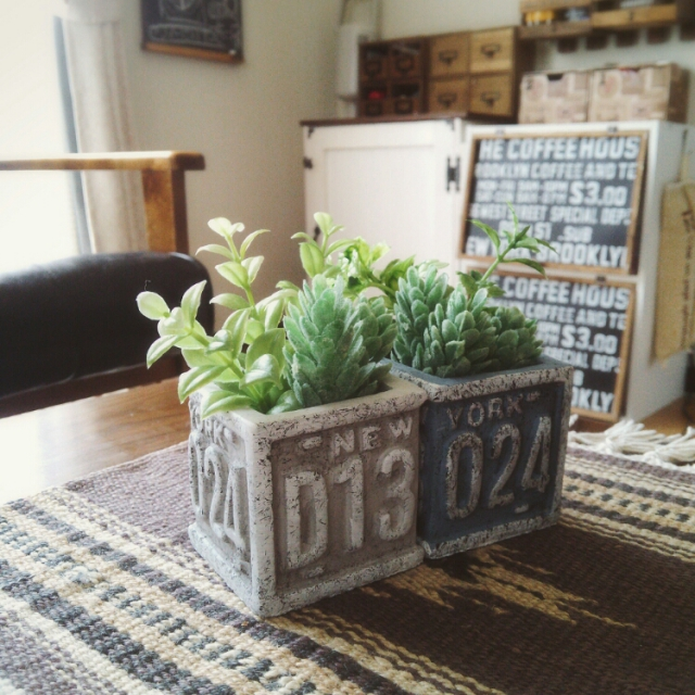 かっこいいガーデンが手軽に作れる♪セリアのセメント鉢