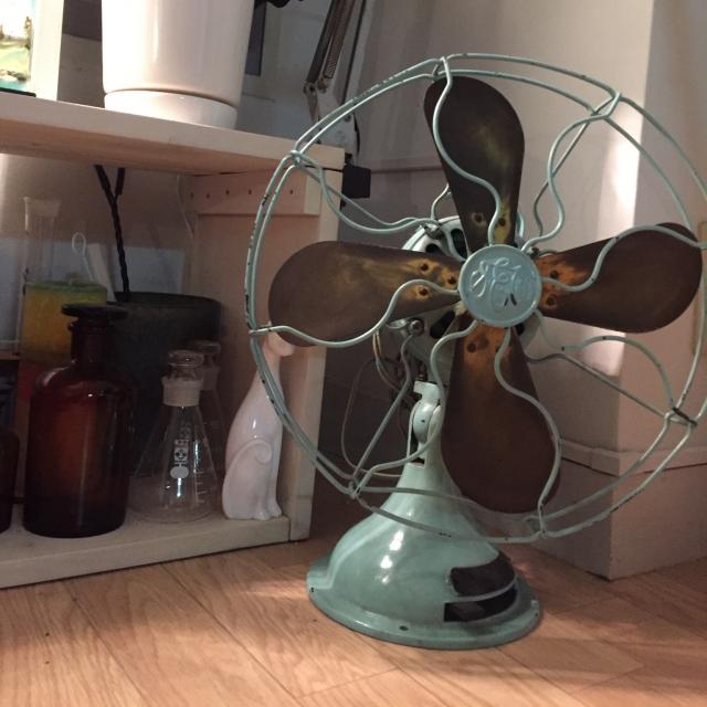 Lounge,観葉植物,扇風機,DIY,ねこのインテリア実例   RoomClip (ルームクリップ)