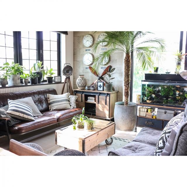 Overview,観葉植物,DIY,DIY家具,ヴィンテージ,男前,セルフリノベーション,Rustic,ブログ更新しました♡,ACME FURNITURE,インスタやってます♡,ambient loungeのインテリア実例 | RoomClip (ルームクリップ)