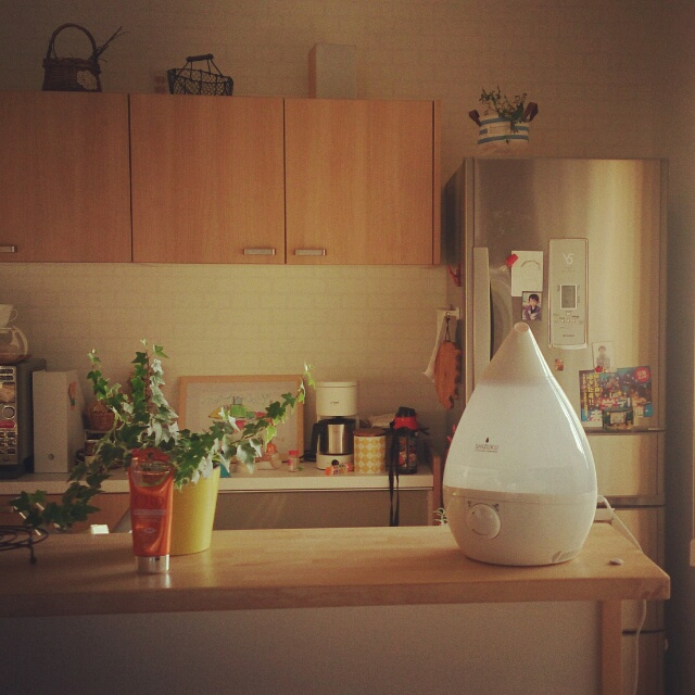 快適なお部屋は湿度から♪ニトリ・無印良品の加湿器