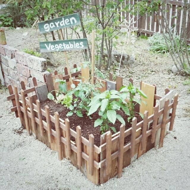 ベランダ・キッチン・お庭で憧れの自給自足生活♪「家庭菜園」実例