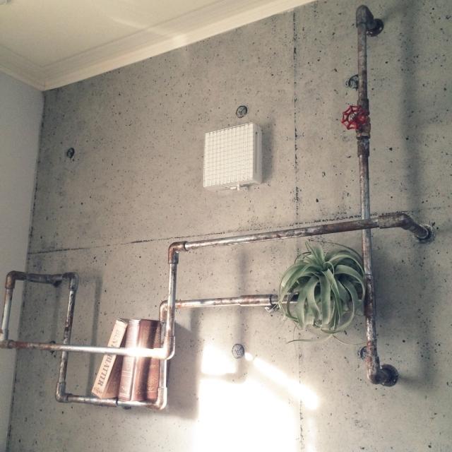 インダストリアル×植物でお部屋に潤いと明るさを