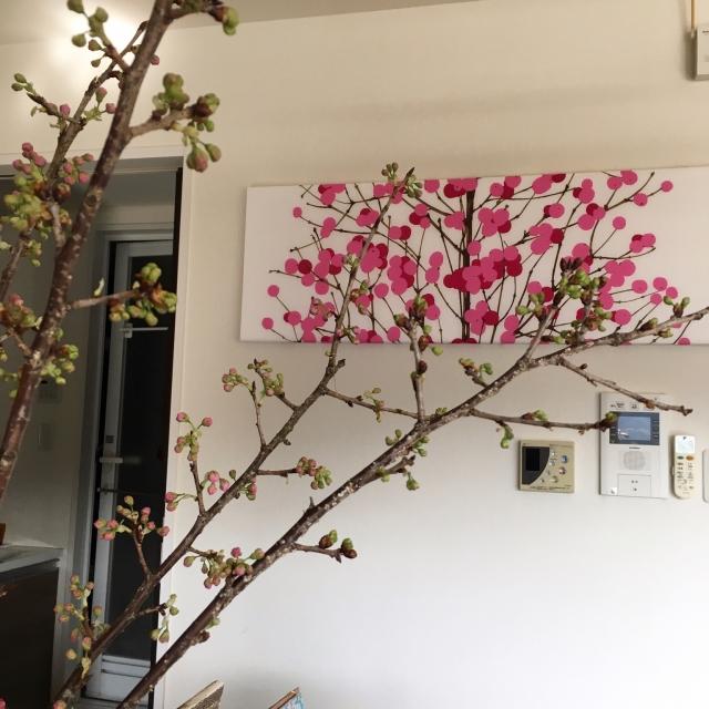 薄紅色の花に顔もほころぶ♡桜インテリアのアイデア集