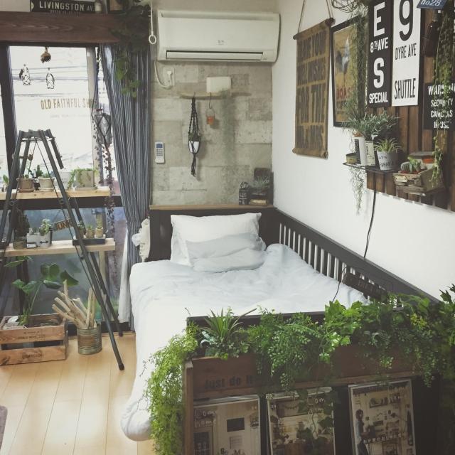 Bedroom,フェイクグリーン,流木,賃貸,エアープランツ,ブックシェルフ,ラダー,ぶらぶら部,hal36さん♡,junkarrowさん♪,コンクリート風壁紙のインテリア実例 | RoomClip (ルームクリップ)