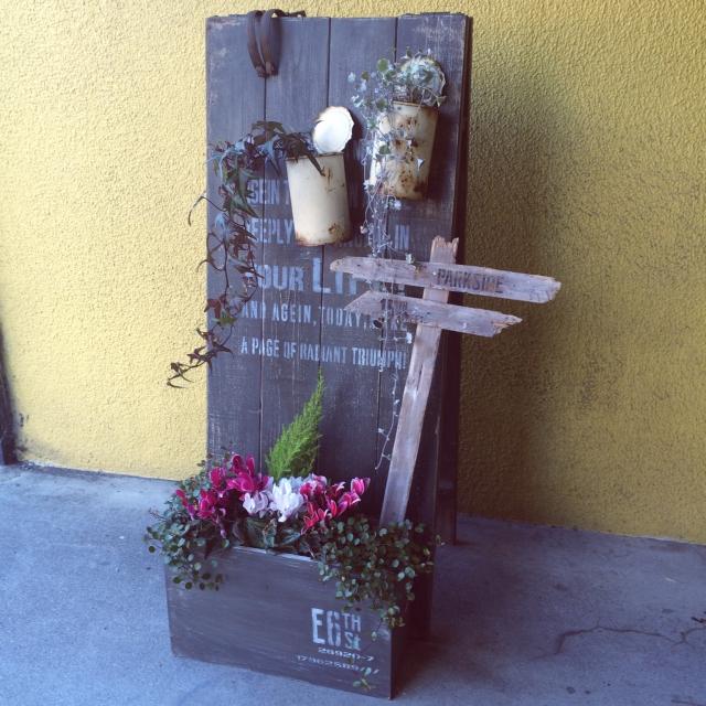 ステンシルでオリジナル植木鉢♪グリーンの足元を個性的に!