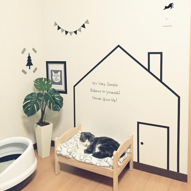 飼い主さん必見☆猫が過ごしやすいイチオシ空間作り