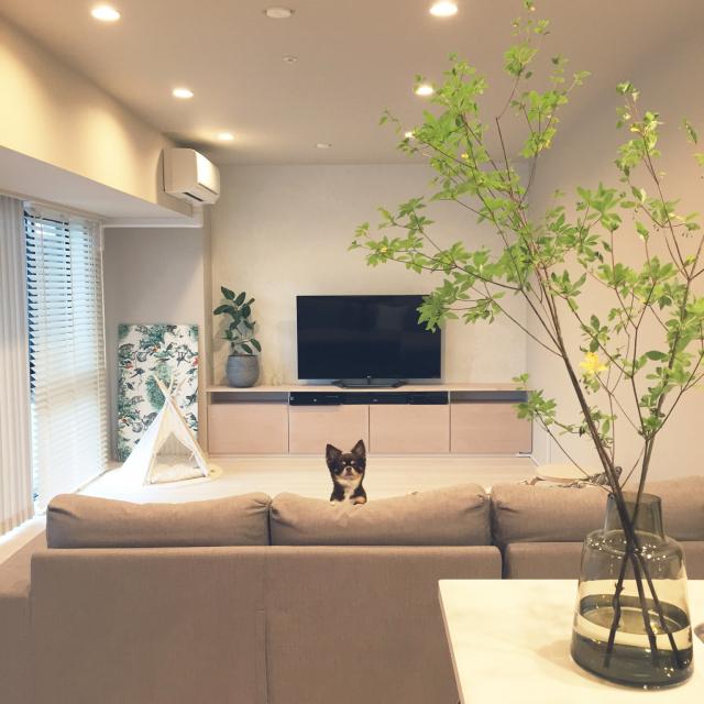 天井、壁、床。適した照明を使って快適な空間を作る