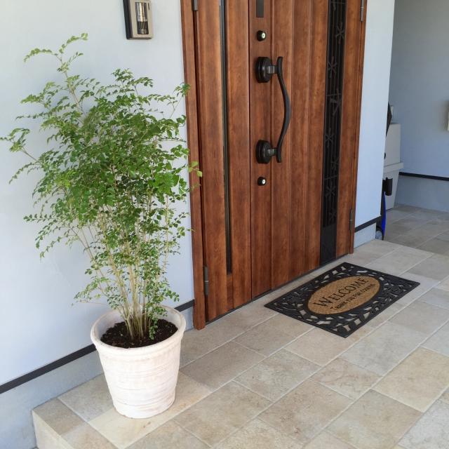 玄関でおうちの印象は決まる☆おすすめニトリの玄関マット
