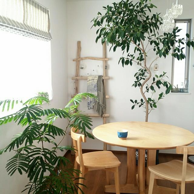 こんな空間欲しい!ラウンドテーブルで作るカフェスタイル