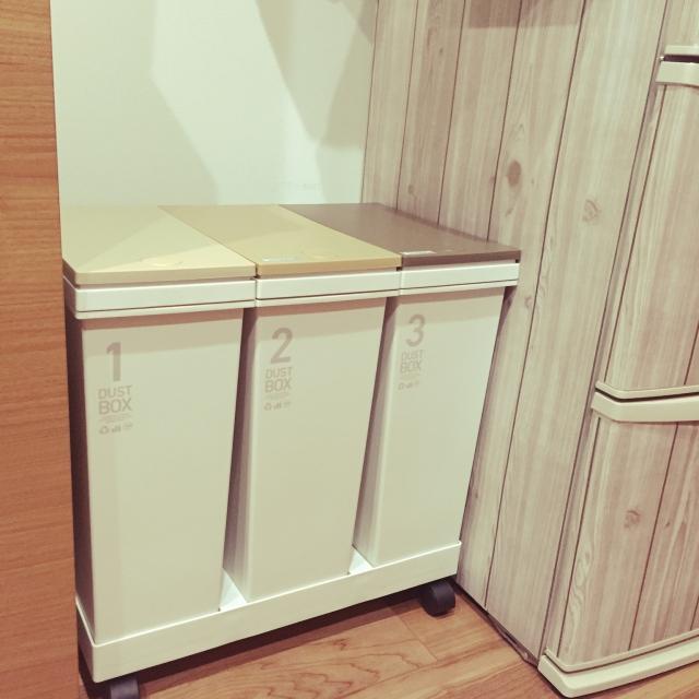 キッチンのゴミ箱は見せる派?見せない派?
