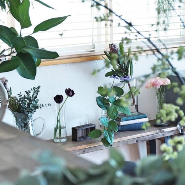少しのスペースでOK!心和むグリーンのある暮らし見本帖