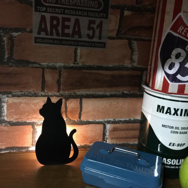 ニャンコに癒される♡100均の猫アイテム集めてみました
