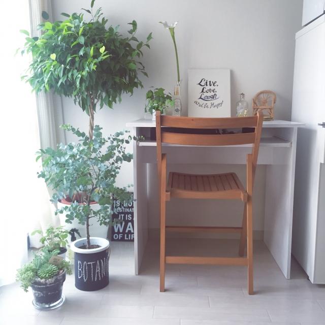 My Desk,観葉植物,ナチュラル,雑貨,green,ガーデニング,一人暮らし,多肉植物,フランフラン,室内グリーン,botanical,しろのインテリア実例 | RoomClip (ルームクリップ)