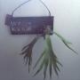 Overview/観葉植物/アンティーク/100均/ハンドメイド/DIY/カフェ風/フェイクグリーン/ステンシル/いなざうるす屋さん/男前に関連する部屋のインテリア実例