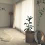 Lounge/観葉植物/無印良品/照明/モビール/北欧/マンション/北欧インテリア/マンションインテリア/タイルカーペット/ヤコブソンランプ/鹿児島睦に関連する部屋のインテリア実例