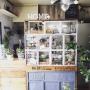 My Shelf/ダイソー/IKEA/植物/100均/ハンドメイド/DIY/手作り/リメイク/ニトリ/セリア/窓枠/フェイクグリーン/りんご箱/壁紙屋本舗/いなざうるす屋さん/男前/NO GREEN NO LIFE/ラスティック/WALPA壁紙に関連する部屋のインテリア実例