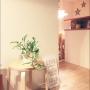 Lounge/観葉植物/フォトフレーム/IKEA/植物/雑貨/北欧/ニトリ/シンプル/PH5に関連する部屋のインテリア実例