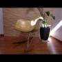 Entrance/観葉植物/イームズ/モダン/ハーマンミラー/広松木工/無垢材/男前/しんぷる/ウォールナット家具/ビィンテージに関連する部屋のインテリア実例