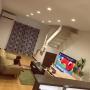 Overview/観葉植物/照明/ソファ/ニトリ/フェイクグリーンに関連する部屋のインテリア実例