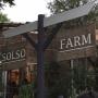 Entrance/観葉植物/SOLSO FARM/インテリアじゃなくてごめんなさい/NO GREEN NO LIFE/いいね!ありがとうございます♪/緑のある暮らしに関連する部屋のインテリア実例