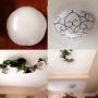 On Walls/照明/リメイク/フェイクグリーンに関連する部屋のインテリア実例