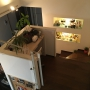 My Desk/照明/IKEA/ニッチ/階段/コルクボード/トラック/吹き抜けリビング/中二階/植物のある生活/ニッチディスプレイに関連する部屋のインテリア実例