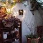 On Walls/IKEA/庭/ガーデニング/DIY/テラス/DIY棚/ガーデニング雑貨/R壁/ストリングライト/植物のある暮らし/ストリングランプに関連する部屋のインテリア実例