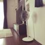 Lounge/扇風機/バルミューダに関連する部屋のインテリア実例