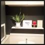 Bathroom/観葉植物/IKEA/雑貨/100均/ハンドメイド/DIY/レトロ/セリア/#壁紙/#クロス/#モノトーン/#モノトーンインテリア/#オシャレに関連する部屋のインテリア実例