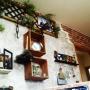 Overview/IKEA/フェイクグリーン/ワトコオイル/サンゲツ/いなざうるす屋さん/BRIWAX/壁紙DIY/DIY /かべがみや本舗さん/DIYボックス/壁インテリア/木目が好き/錆び塗装/グリーンアンティーク/高窓風壁インテリアに関連する部屋のインテリア実例