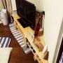 Lounge/ダイソー/照明/キャンドル/IKEA/雑貨/100均/ハンドメイド/DIY/北欧/ニトリ/セリアに関連する部屋のインテリア実例