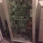 Entrance/観葉植物/雑貨/DIY/セリア/エアプランツに関連する部屋のインテリア実例