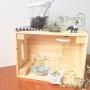 Lounge/一人暮らし/WECK/エアプランツ/NO GREEN NO LIFE/植物初心者/WECKの瓶/木箱が好きに関連する部屋のインテリア実例