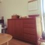 Lounge/IKEA/北欧/フェイクグリーン/倉敷意匠/北の住まい設計社/広松木工に関連する部屋のインテリア実例