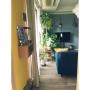Lounge/観葉植物/無印良品/IKEA/モビール/DIY/北欧/壁紙屋本舗/北欧ファブリック/ブルーグレーの壁/ハンギングプランター/マンション暮らし/IQライト/NO GREEN NO LIFE!に関連する部屋のインテリア実例