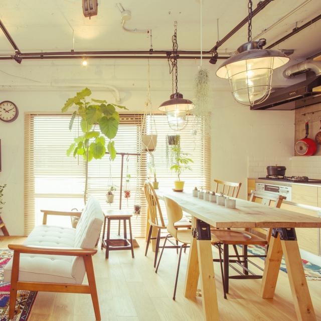 テイスト別!観葉植物取り入れ方ヒント集! | RoomClip mag | 暮らしとインテリアのwebマガジン