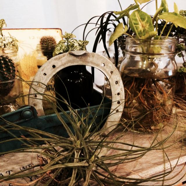 ラッキーアイテムは馬蹄☆蹄鉄をお部屋に飾ってみよう   RoomClip mag
