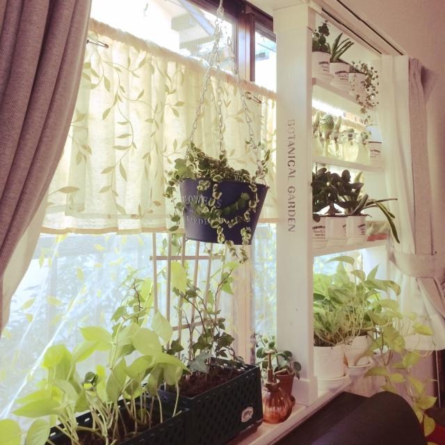 カーテン一新!気分も一新!お部屋別大満足の秘訣 | RoomClip mag | 暮らしとインテリアのwebマガジン