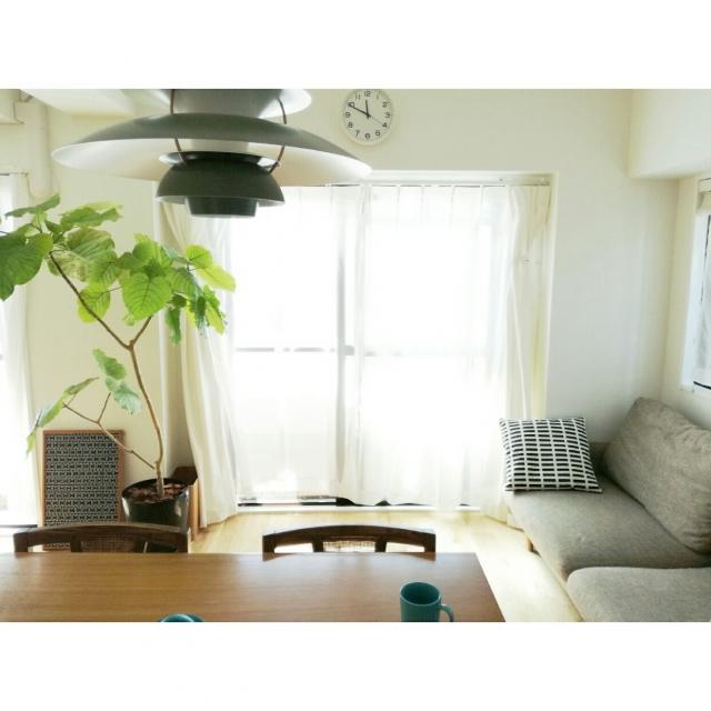 始めようグリーンのある生活☆スタイル別観葉植物の飾り方 | RoomClip mag | 暮らしとインテリアのwebマガジン