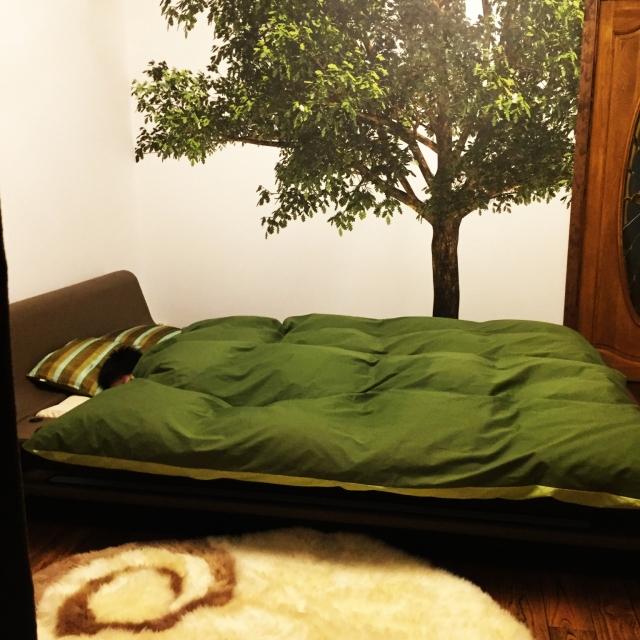 寝室を模様替え♡安眠のためのアイディア10選 | RoomClip mag | 暮らしとインテリアのwebマガジン