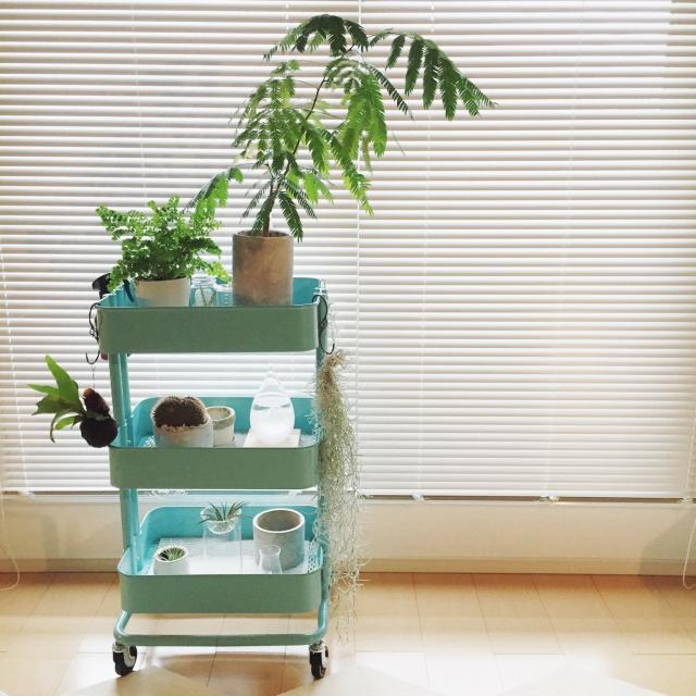 家中使える♪IKEAのキッチンワゴンまとめ | RoomClip mag | 暮らしとインテリアのwebマガジン