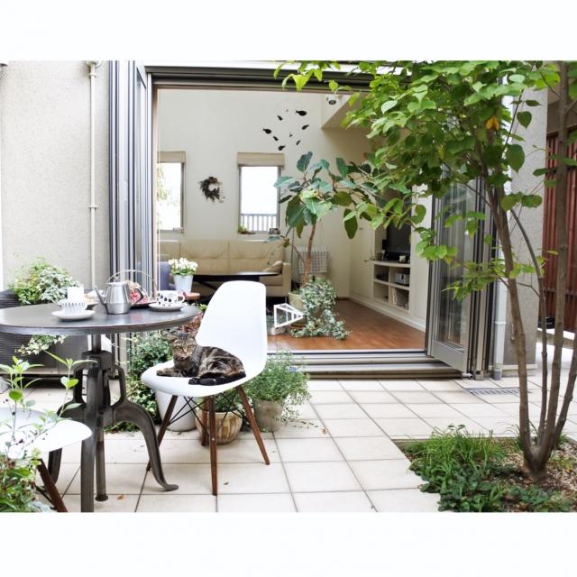 どこが違うの?居心地のいい家の3つの共通点+α | RoomClip mag | 暮らしとインテリアのwebマガジン