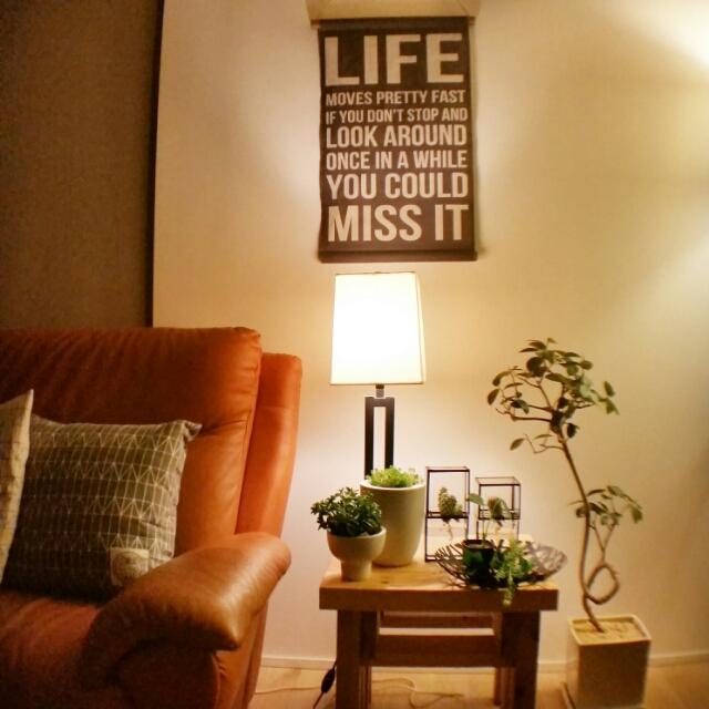 100均グッズで、グリーンのある生活を楽しみませんか? | RoomClip mag | 暮らしとインテリアのwebマガジン