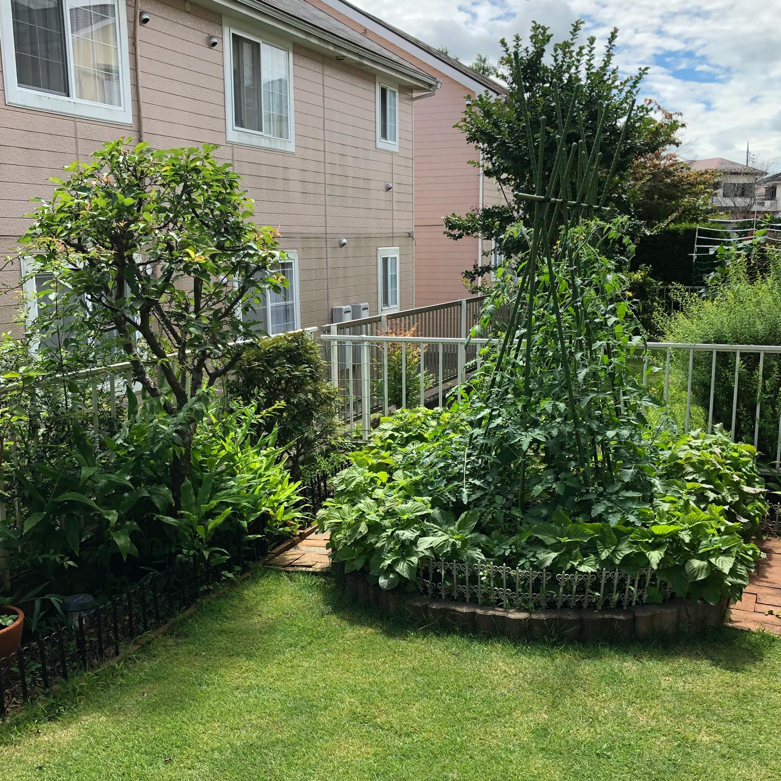 家庭菜園/DIY/花のある暮らしのインテリア実例 - 2021-09-17 01:47:03