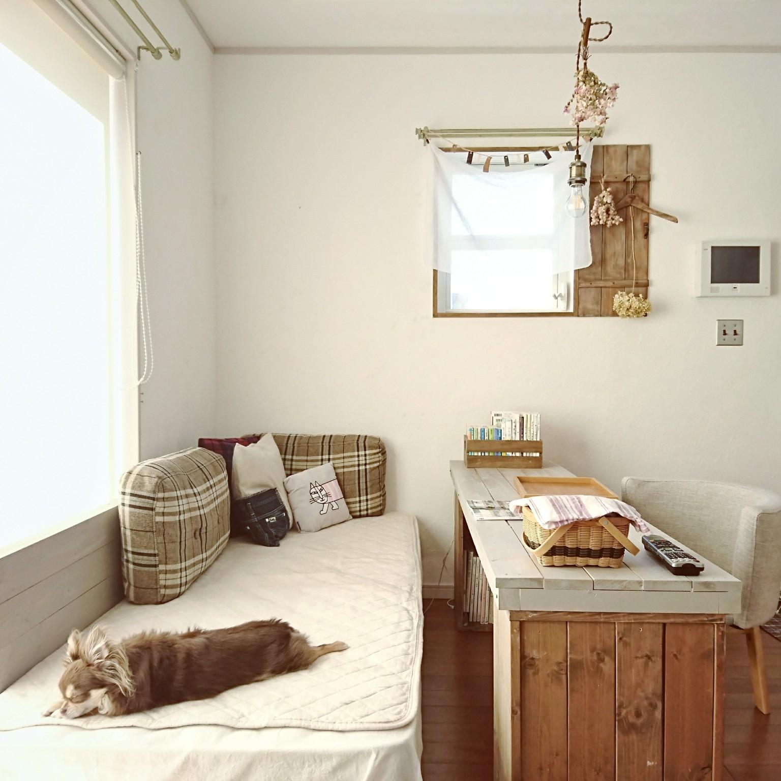 リビング/ペットと暮らすインテリア/DIY/すのこベッド/おうち時間...などのインテリア実例 - 2021-05-06 16:48:57