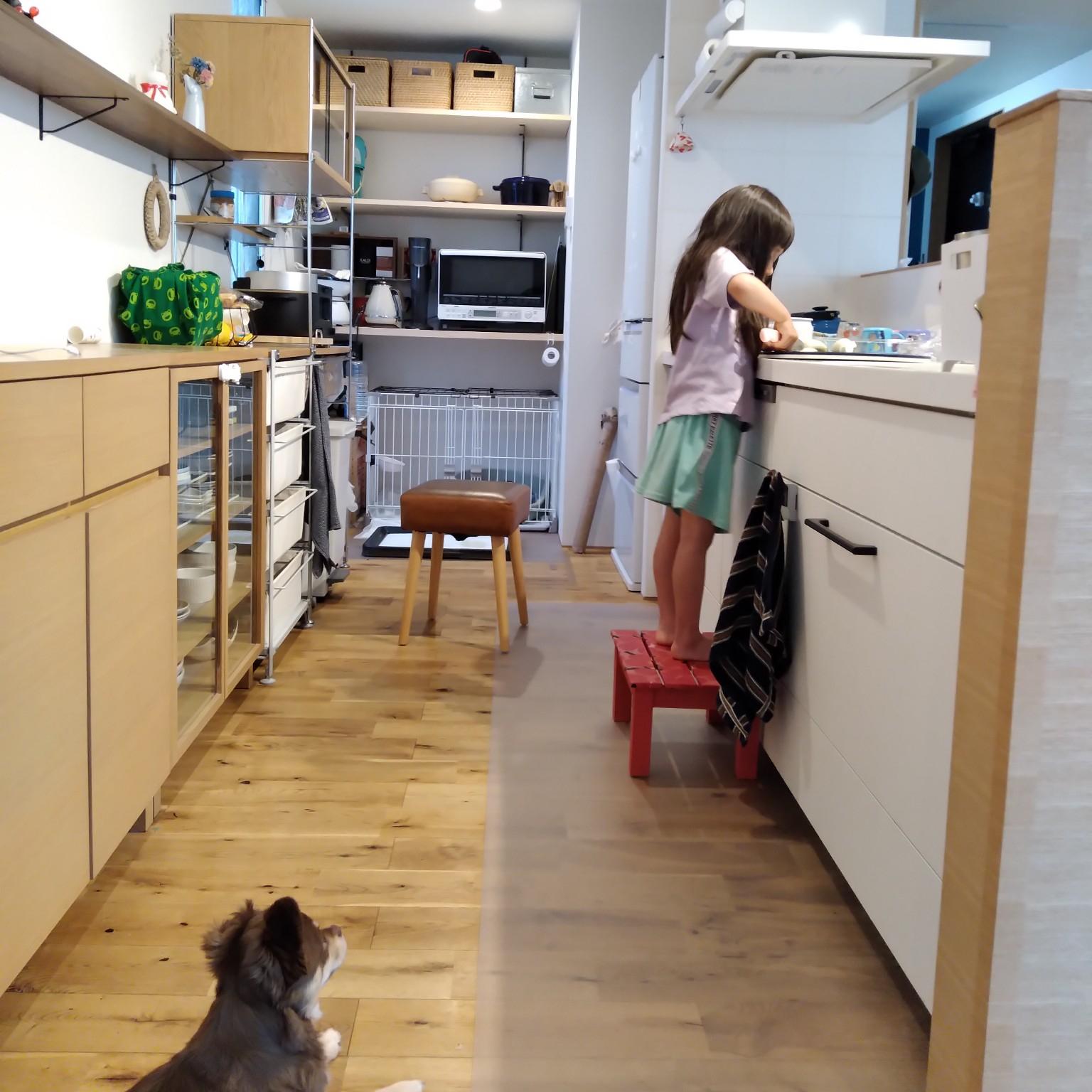キッチン/ゲージ/ニトリ/無印良品/ナラ無垢床...などのインテリア実例 - 2021-04-22 21:39:38
