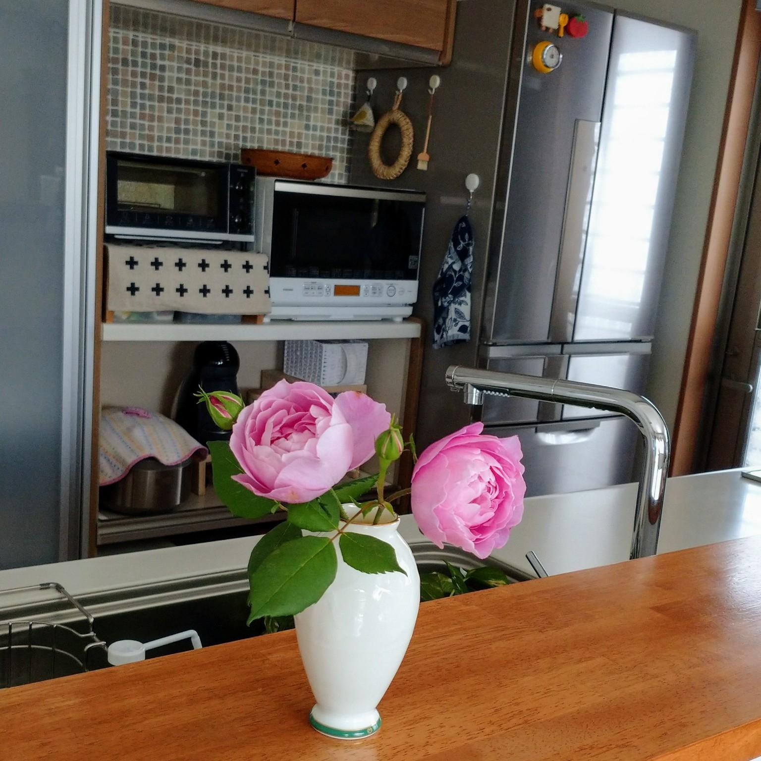 キッチン/おうち花見/いつもいいね!ありがとうございます♪/おじゃま出来ずごめんなさい/グリーンのある暮らし...などのインテリア実例 - 2021-04-22 11:48:05