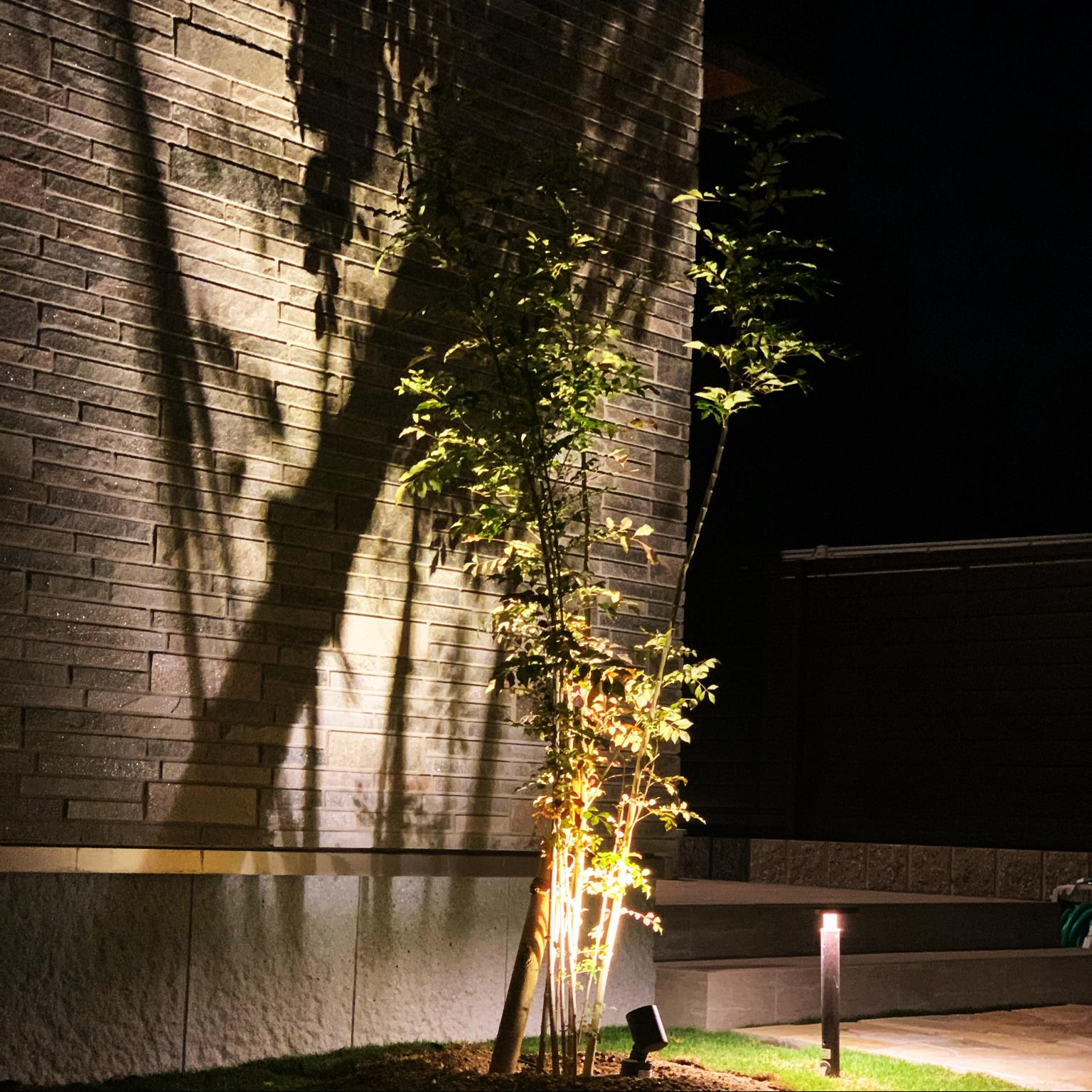 シルエットライト/シンボルツリー/観葉植物/照明/LIXIL...などのインテリア実例 - 2021-05-14 07:43:45
