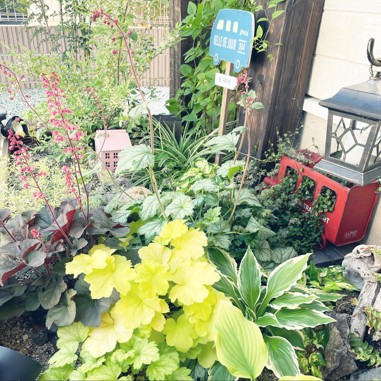 流木/ガーデン雑貨/植物のある暮らし/ぐりーんと暮らす/庭作り中...などのインテリア実例 - 2021-04-20 14:09:28